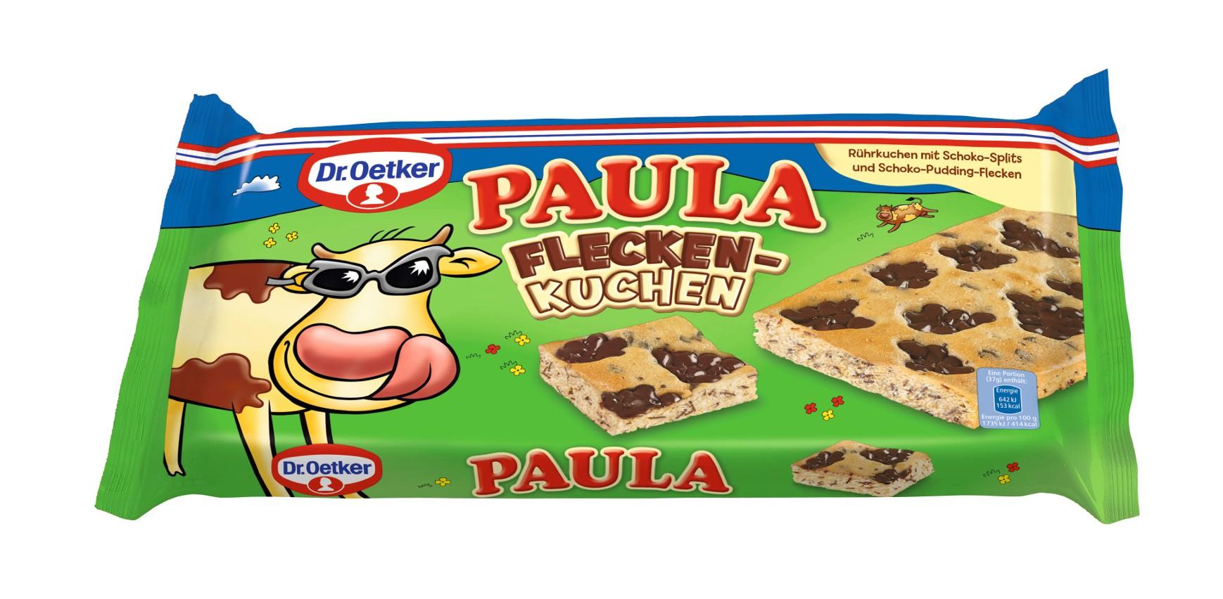 Dr. Oetker PAULA Fleckenkuchen mit Schoko-Splits und Schoko-Pudding-Flecken