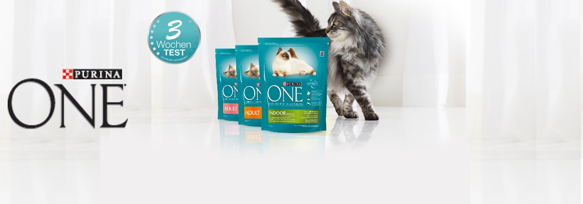 PURINA ONE Test