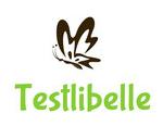 Test Dr. Oetker kleine Rührkuchen   Testlibelle testet für euch