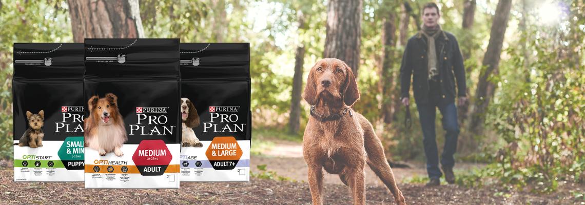PRO PLAN® Hundefutter Test