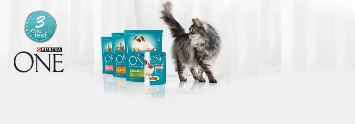 PURINA ONE Katzenfutter Test